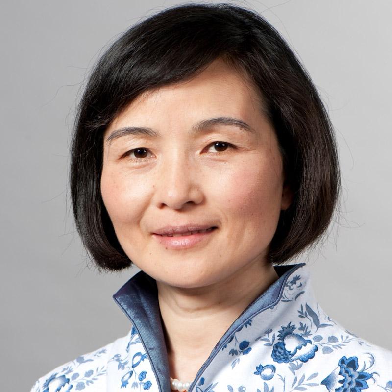 Prof. Liqiu Meng, Technische Universität München