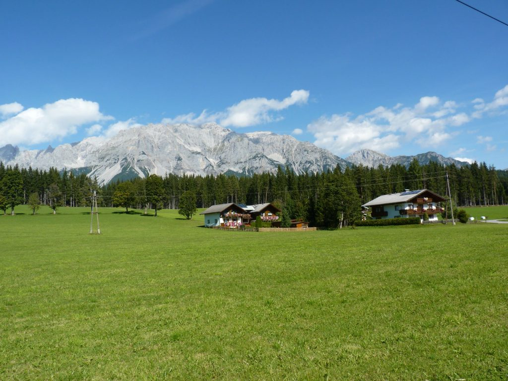 Alpine Field School 2012