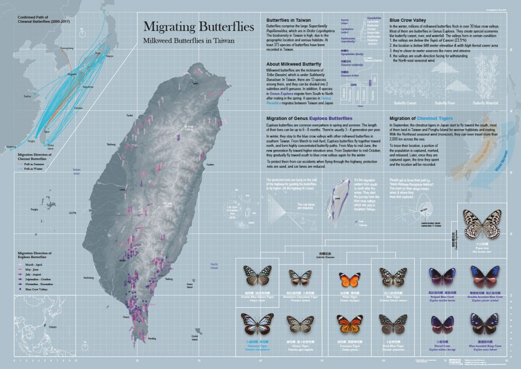 Migrating Butterflies – Milkweed Butterflies in Taiwan by P. Yuan